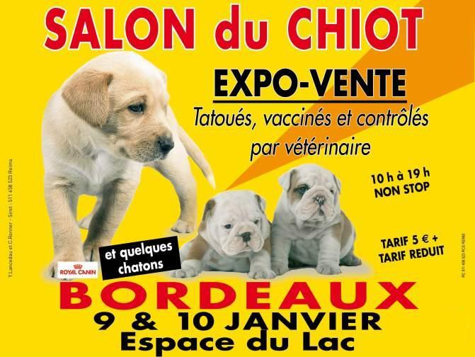 Salon du chiot bordeaux lac le petit bordeaux for Salon du chiot nancy